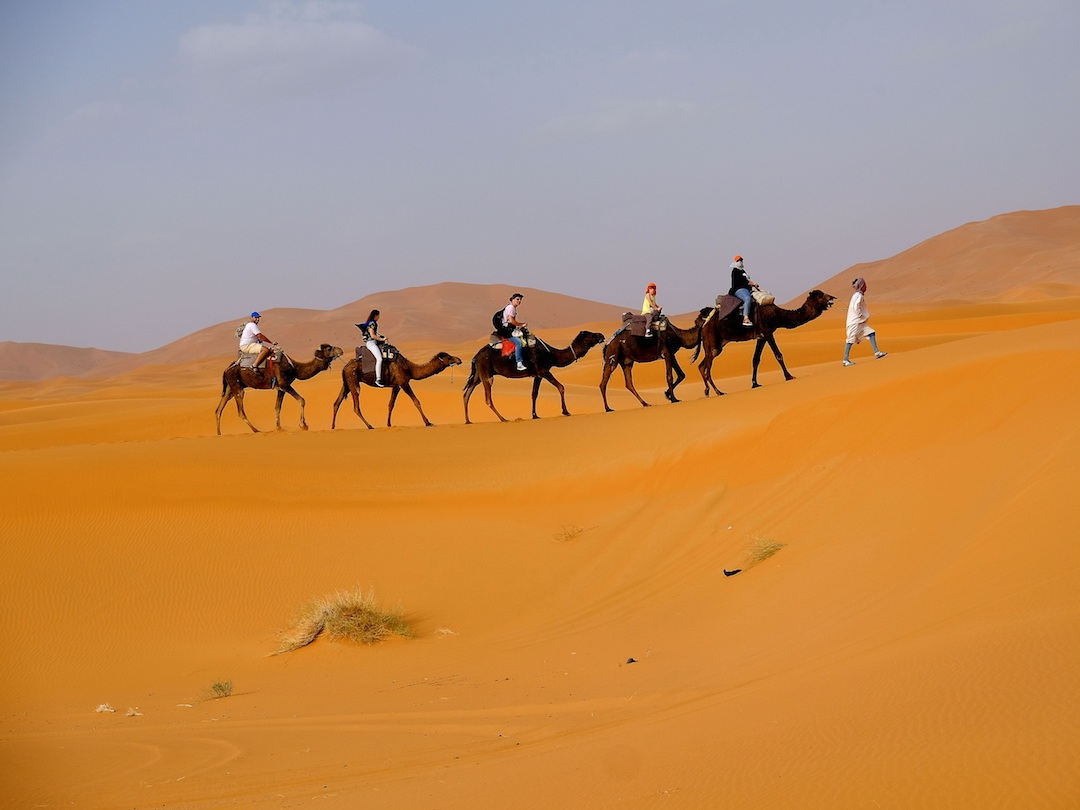 People and camels on a journey through the desert